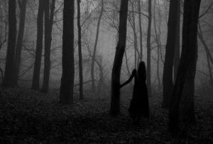 shadow of a girl in the woods